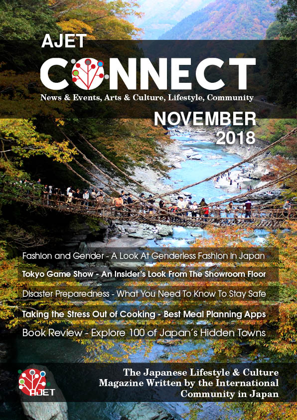 Connect November 2018 Cover