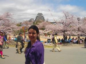 Sakura at Himeji Castle