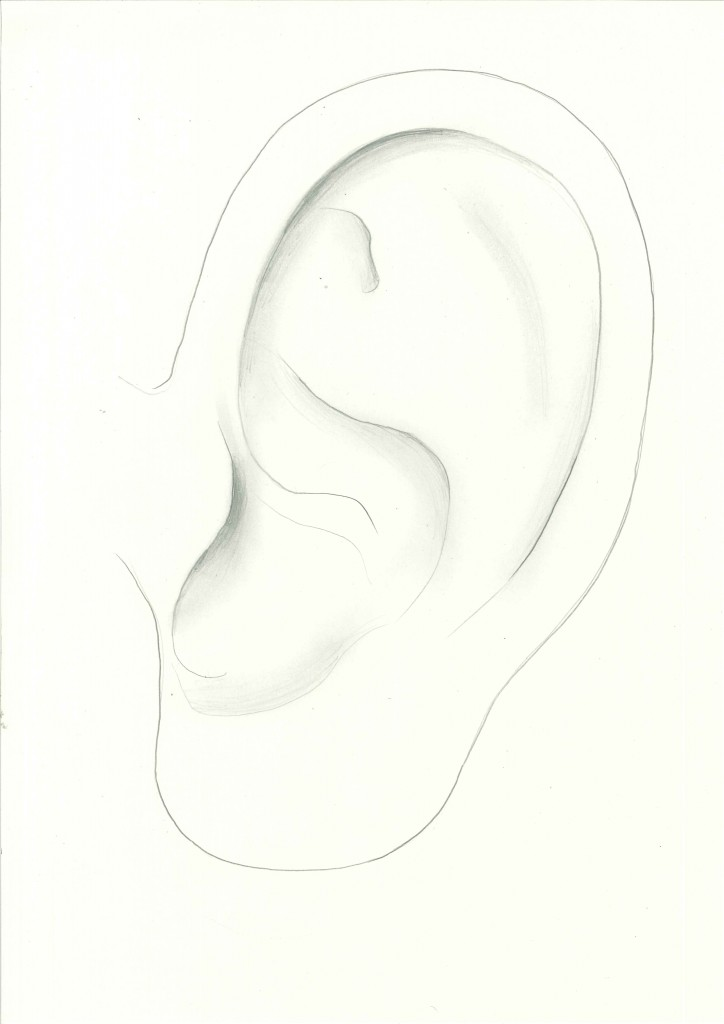 ear.outline