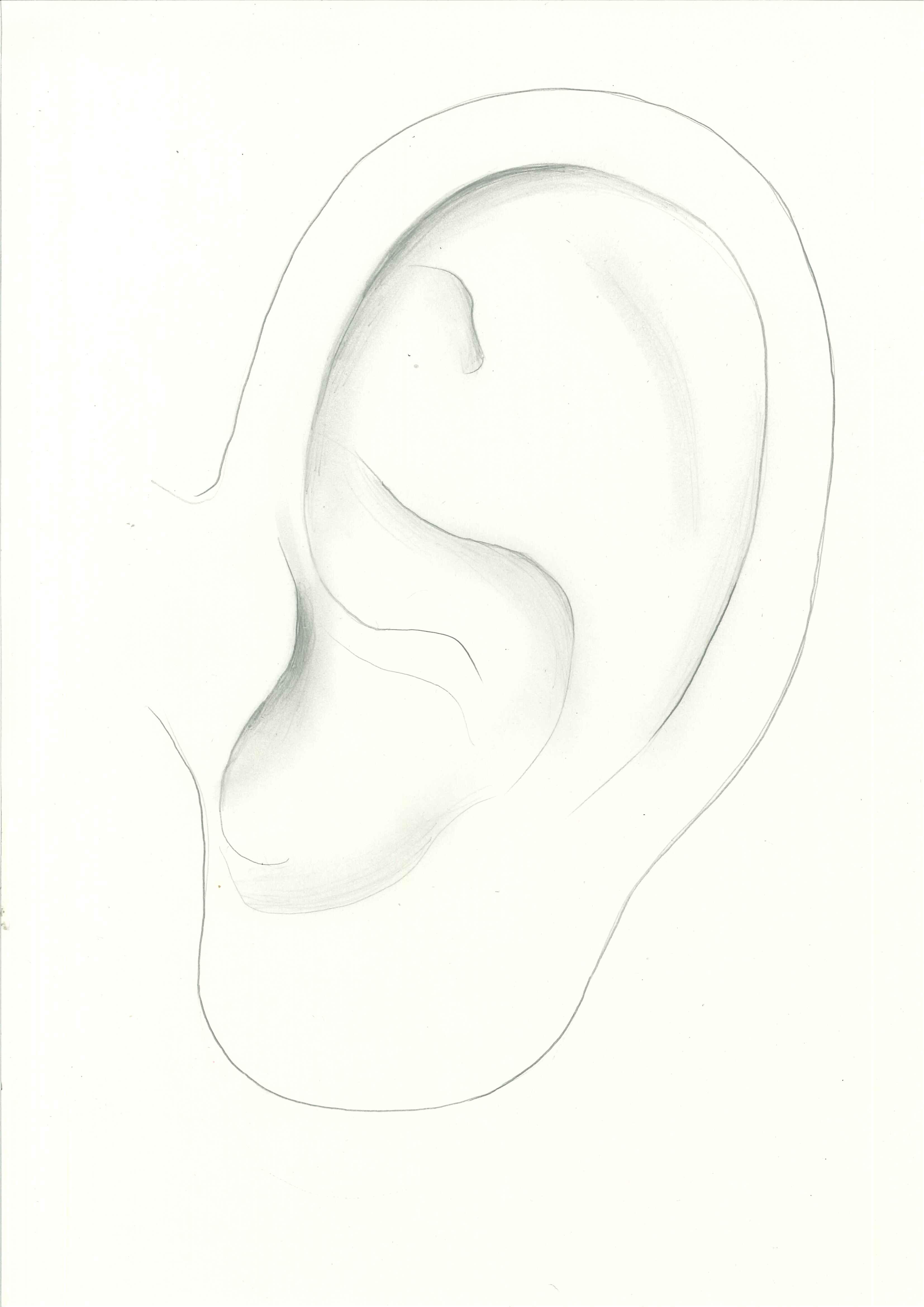 ear outline ajet