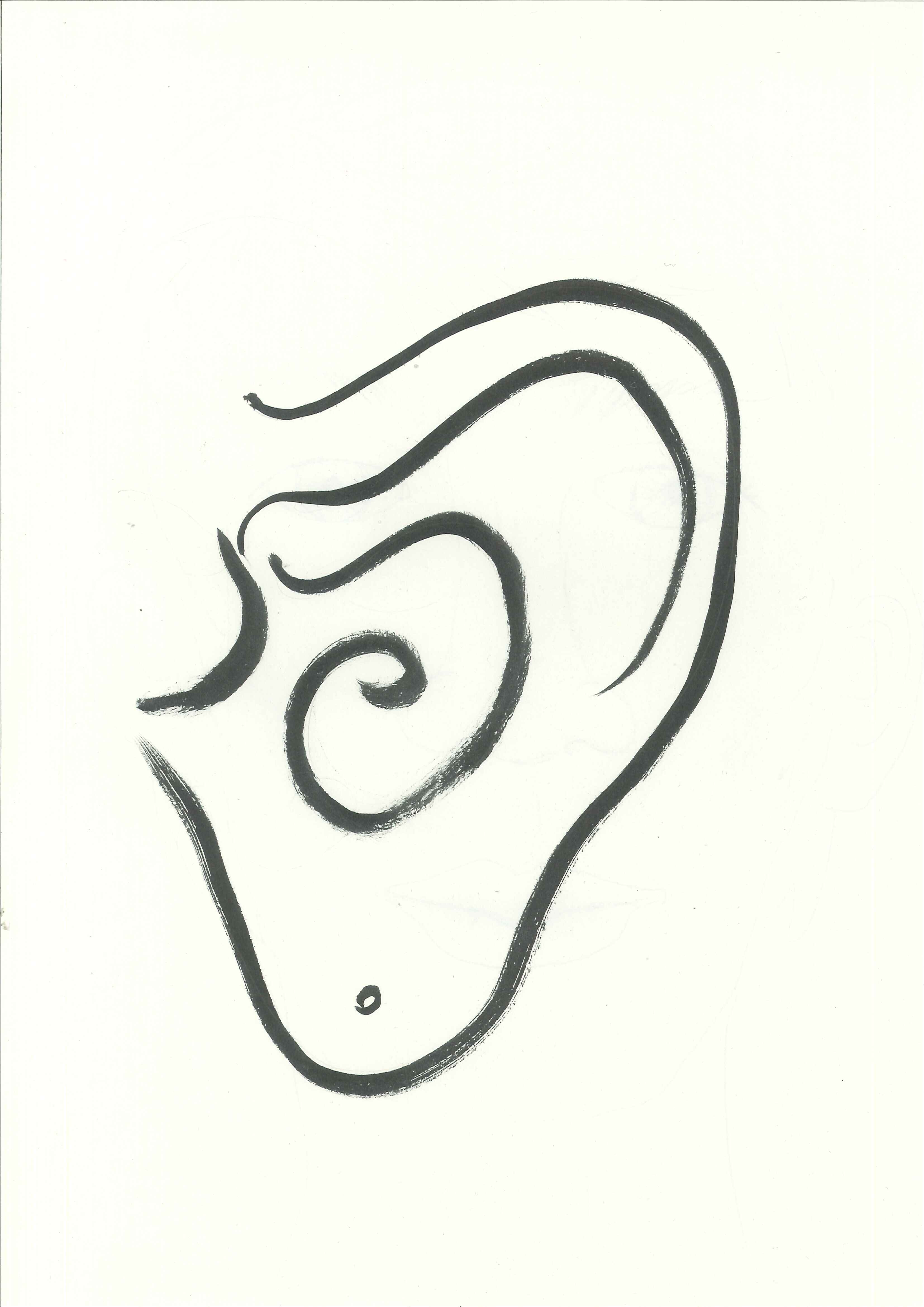 Clip Art Ears clipart  Ear Clip Art Images